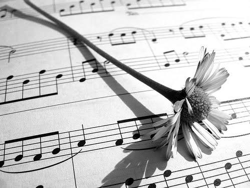 RICERCA ETIMOLOGICA SULLA TERMINOLOGIA MUSICALE – PARTE 2 – a cura di Matteo Breschi